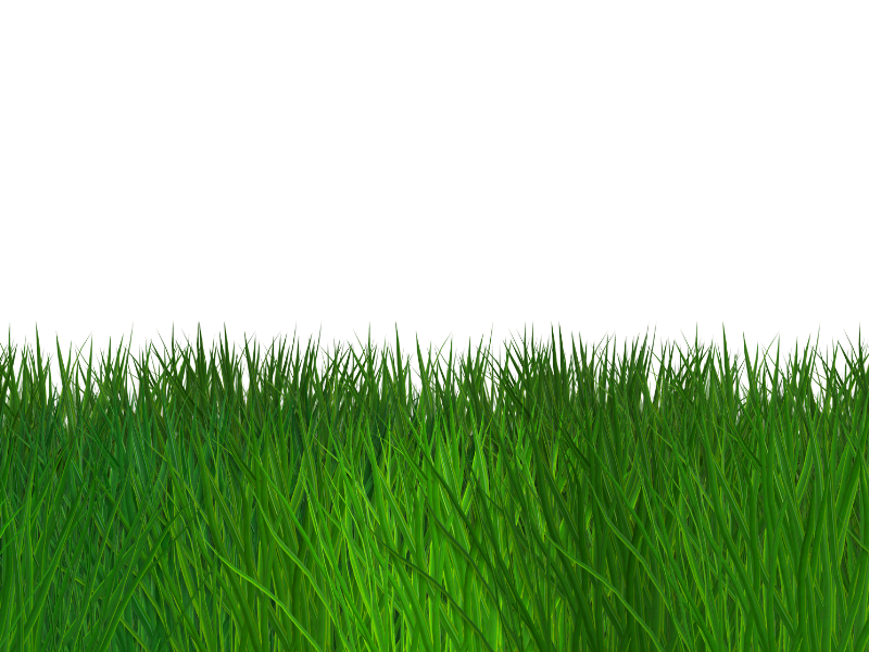 Free png images with transparent backgrounds. Border grass seamless background