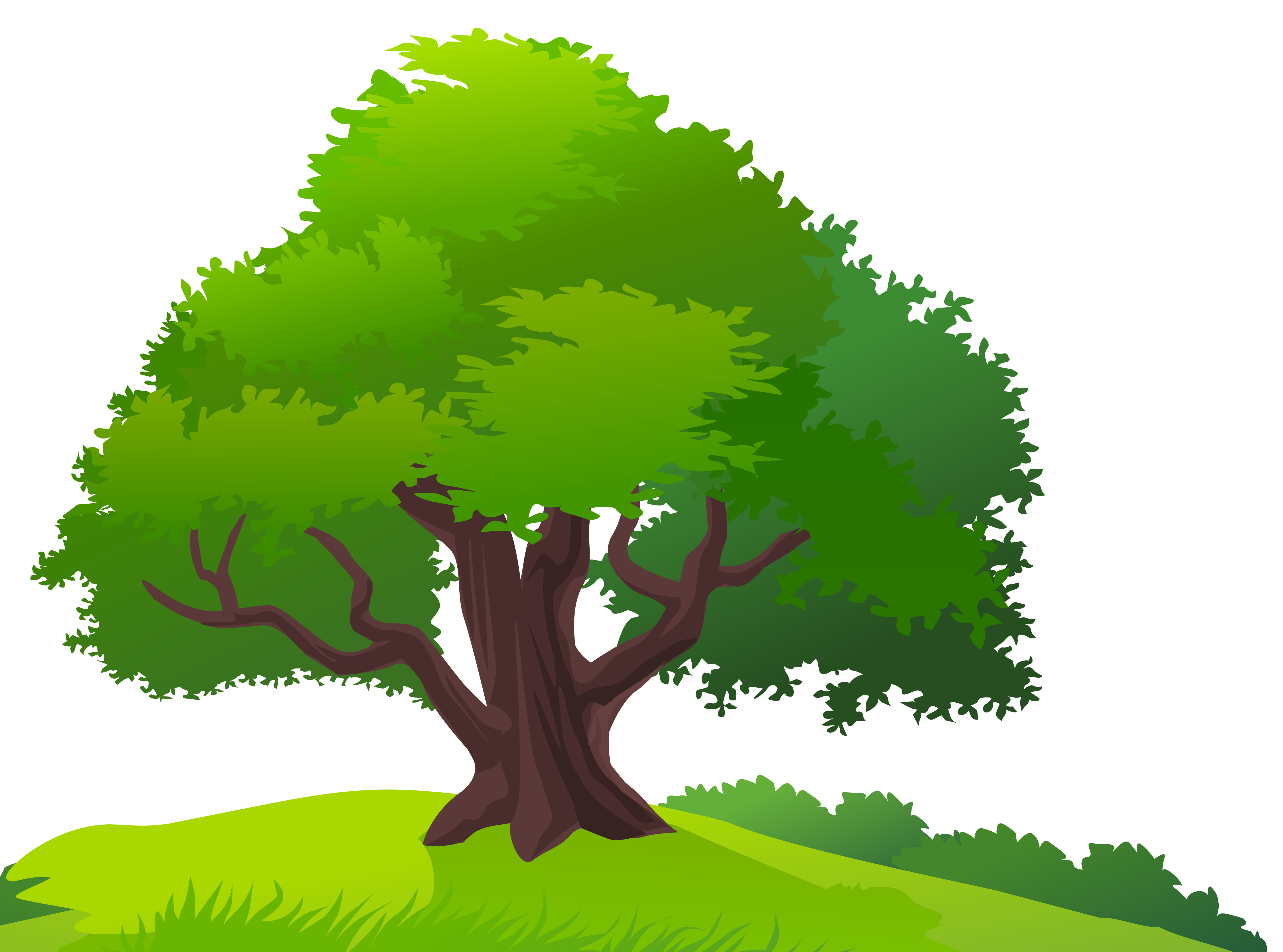 Tree and grass png. Clipart trees romantic