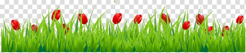 Flower with red tulips. Clipart grass tulip