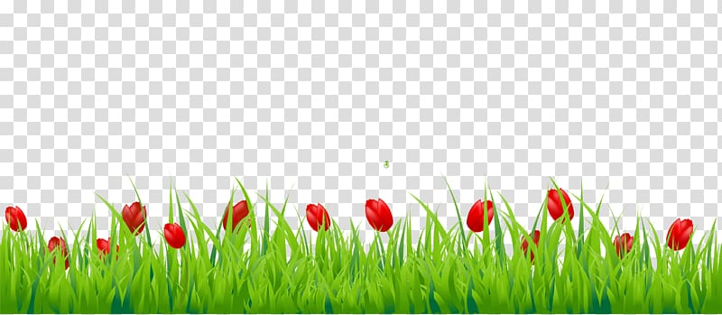 Clipart grass tulip. Red tulips and green