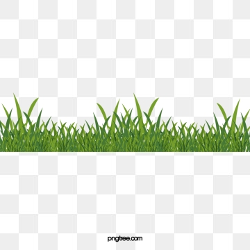 Clipart grass vector. Green png psd and