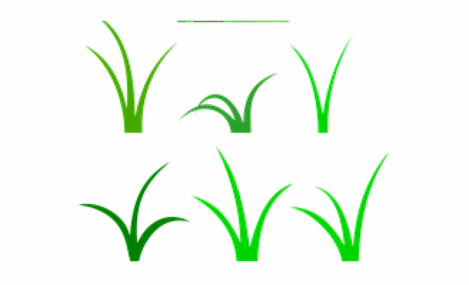 Sea wild patch of. Clipart grass vector