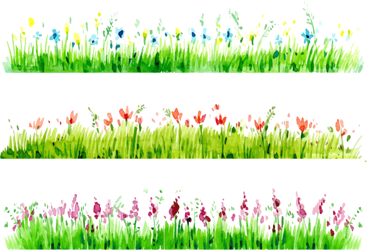 Grass clipart watercolor. Painting download borders transprent
