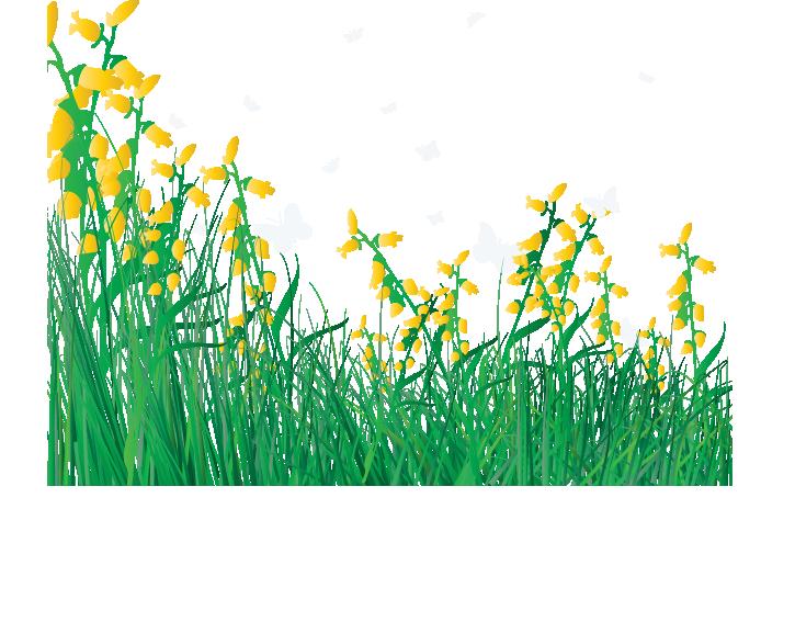 Flower lawn clip art. Clipart grass watercolor