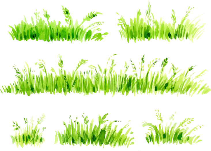 Painting download painted transprent. Grass clipart watercolor