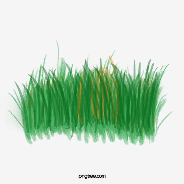 Green . Clipart grass watercolor