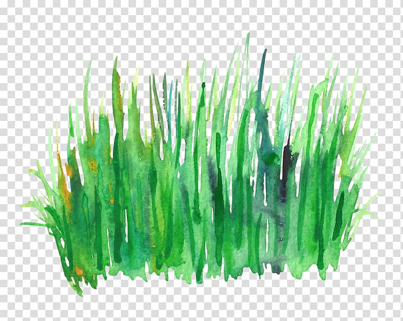 Grass clipart watercolor. Green painting