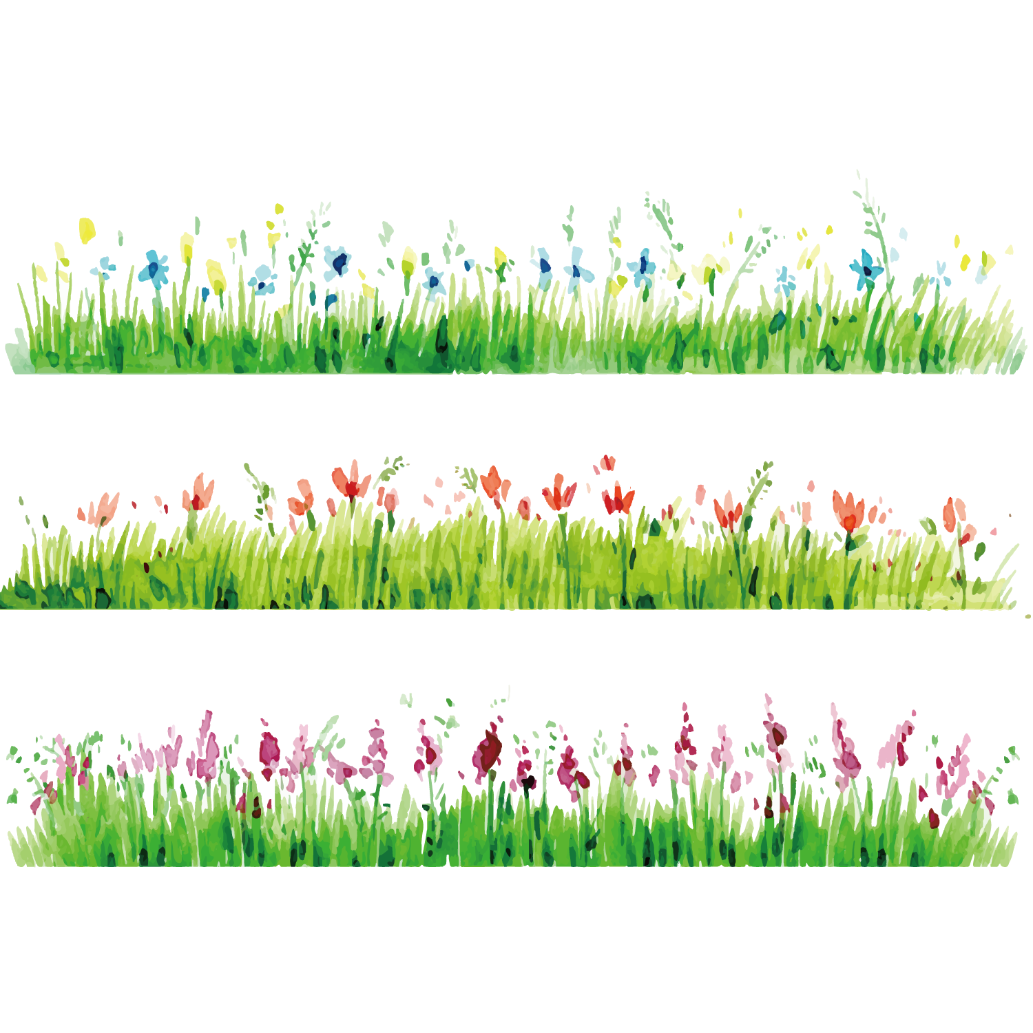 Clipart grass watercolor. Painting flower photography drawing