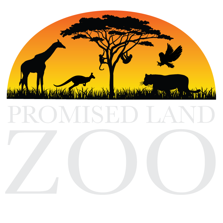 Clipart grass zoo. Promised land zoos missouri