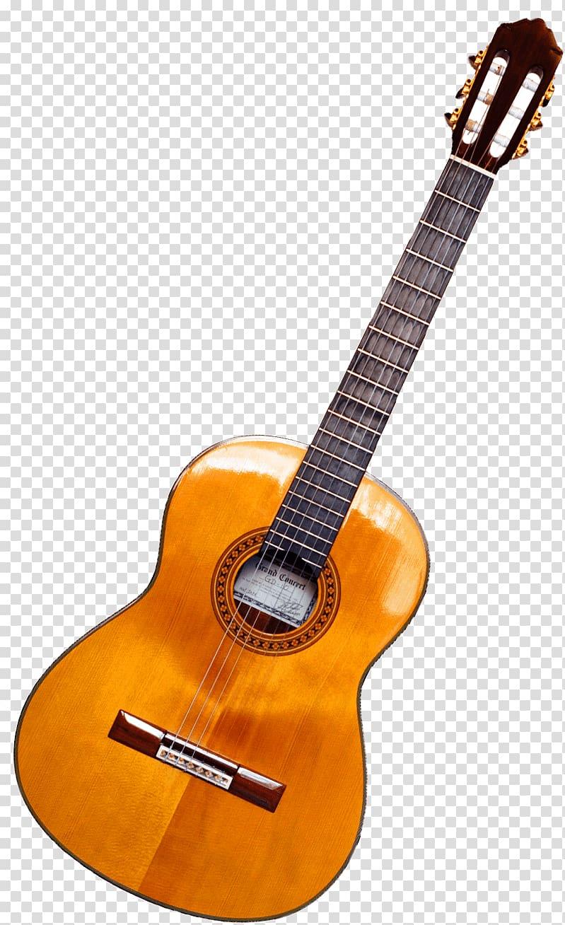 Classical ukulele twelve string. Clipart guitar brown guitar