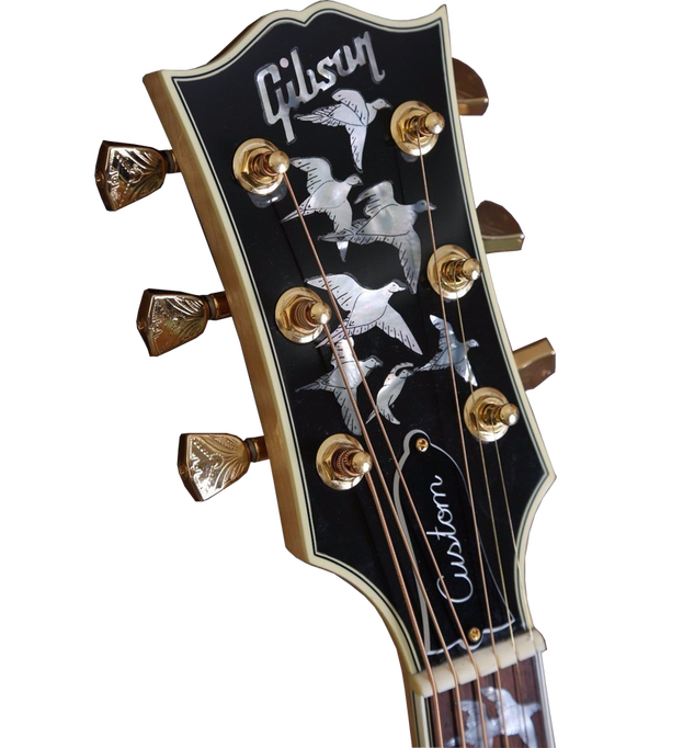 Gibson doves in flight. Clipart guitar photograph