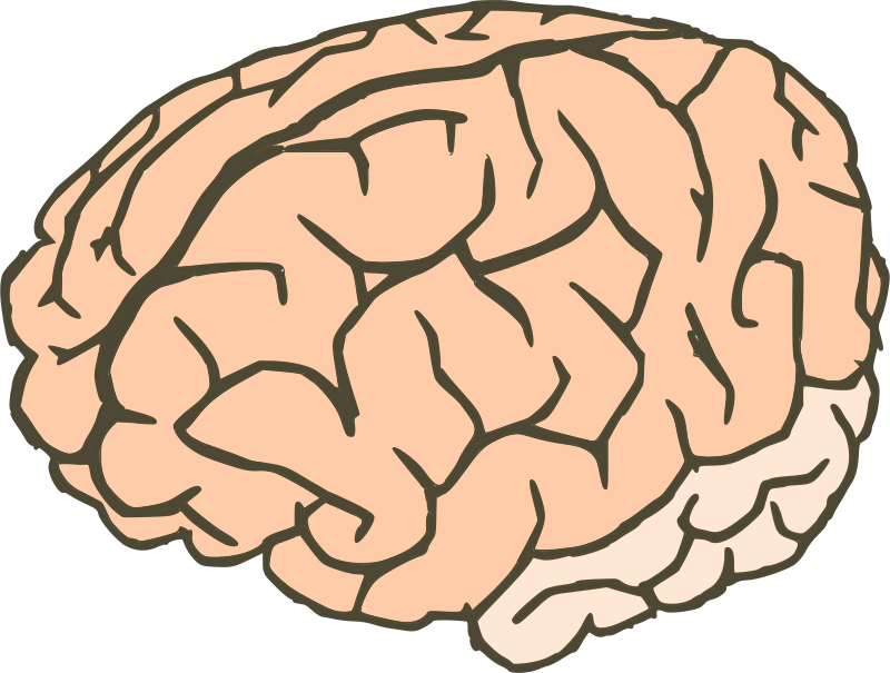 collection of knowledge. Clipart halloween brain