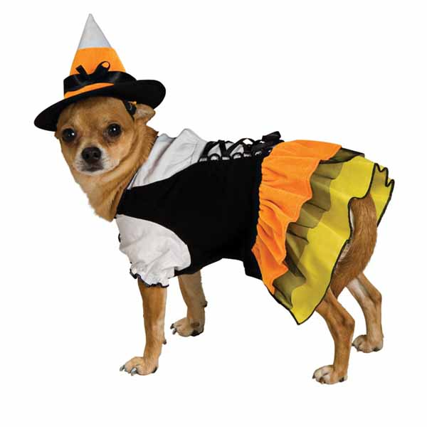 Free dog costume cliparts. Clipart halloween pet