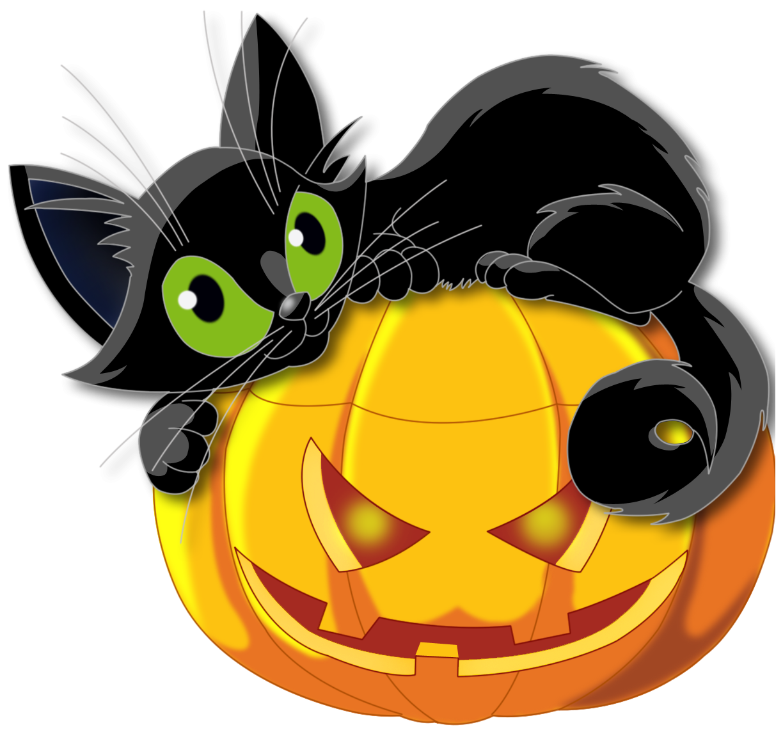 Clipart halloween pet. Cat pumpkin png picture