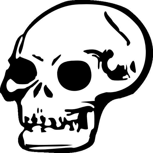 Human skull clip art. Skeleton clipart sideways