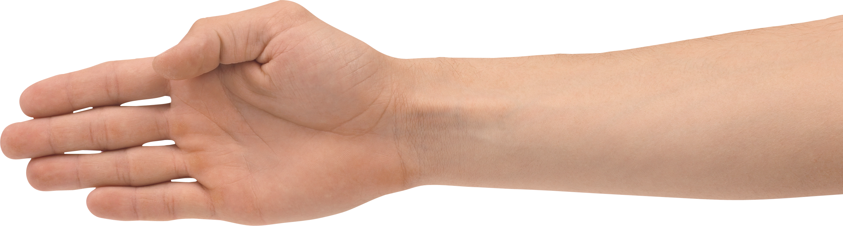 Hands png image purepng. Hand clipart forearm