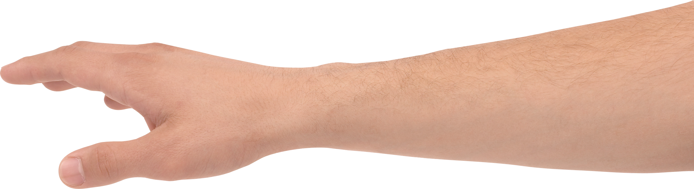 Png image purepng free. Hands clipart forearm