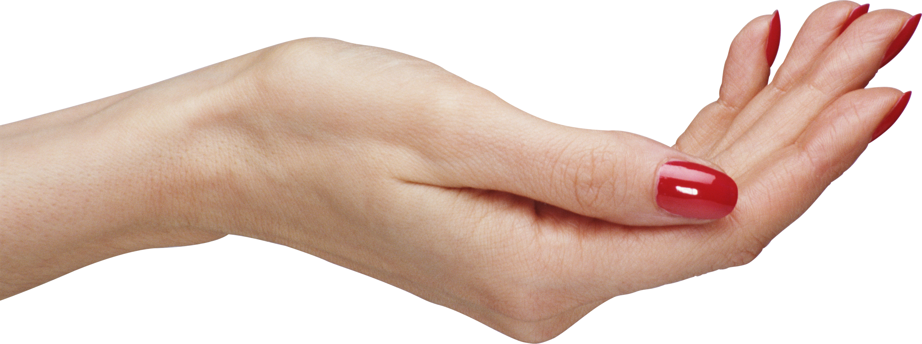 Skin clipart big hand. Hands png image purepng
