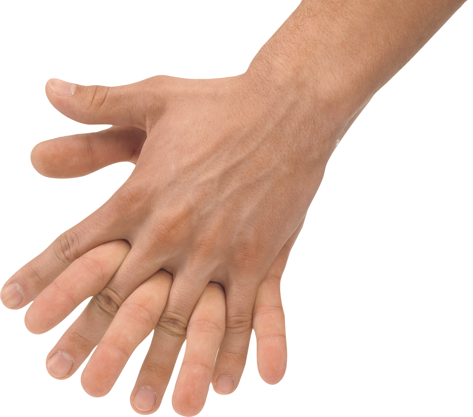 Hands clipart forearm. Png image purepng free