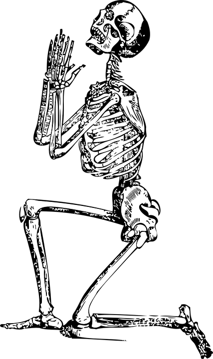Free image on pixabay. Longhorn clipart skeleton