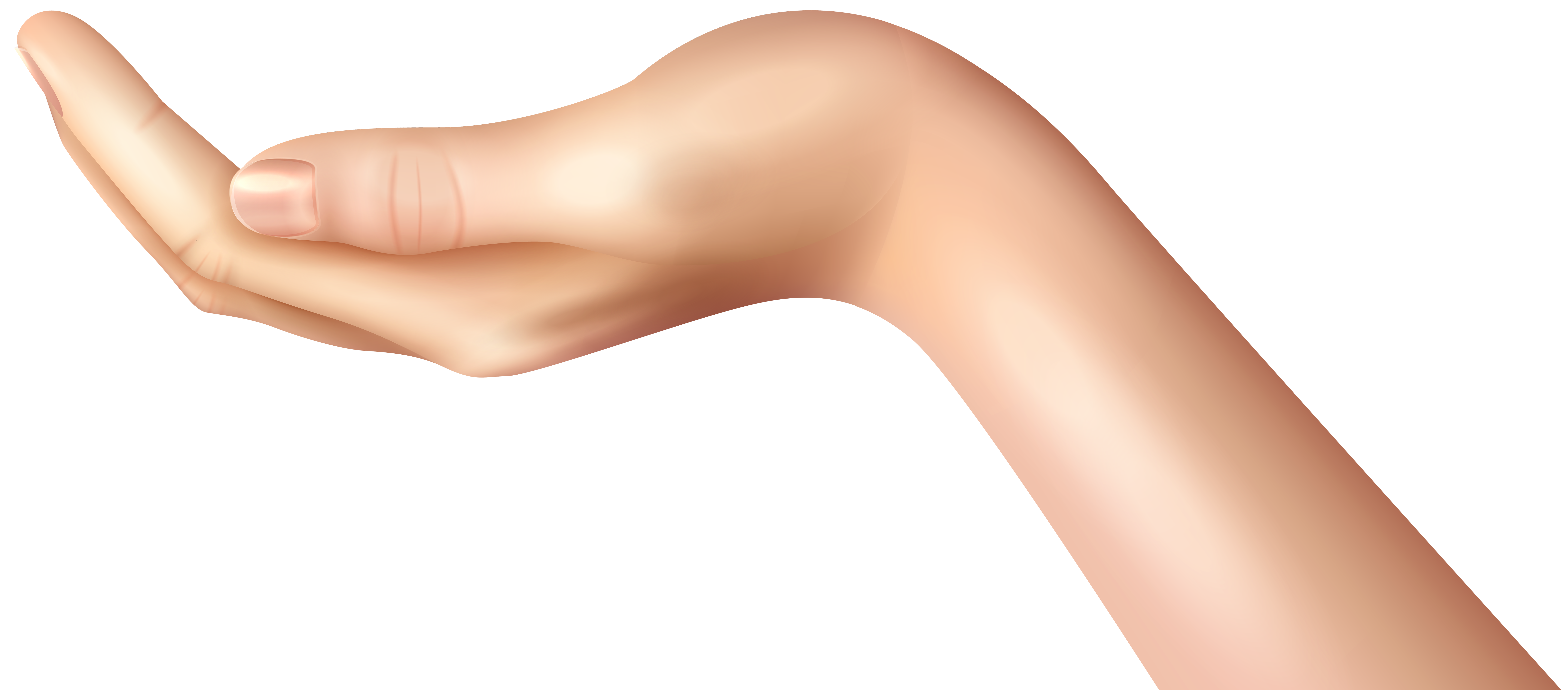Hands clipart hand holding. Woman gesture png clip