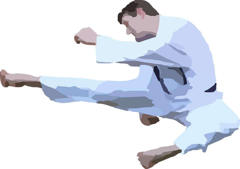 Silhouette transparent png stickpng. Hand clipart karate