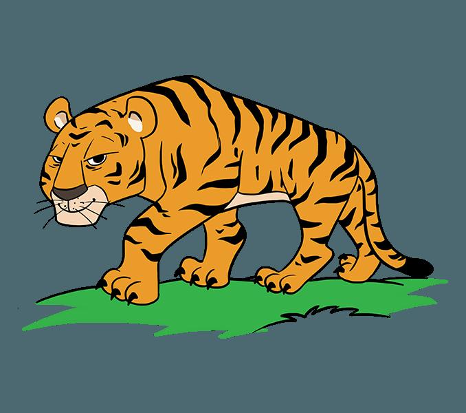 Drawn tiiger catoon pencil. Clipart tiger hand