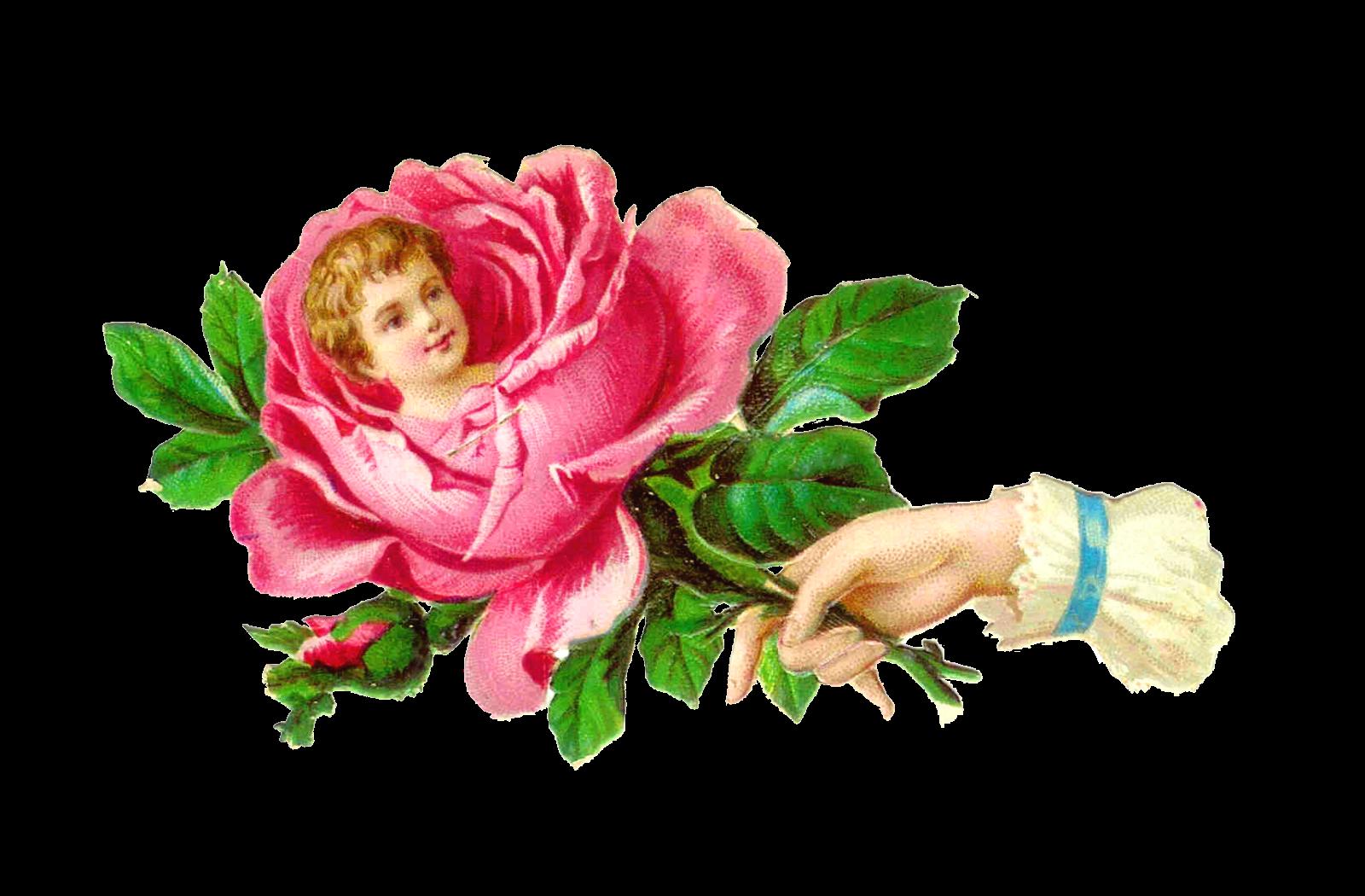 Hand clipart flower. Victorian buscar con google