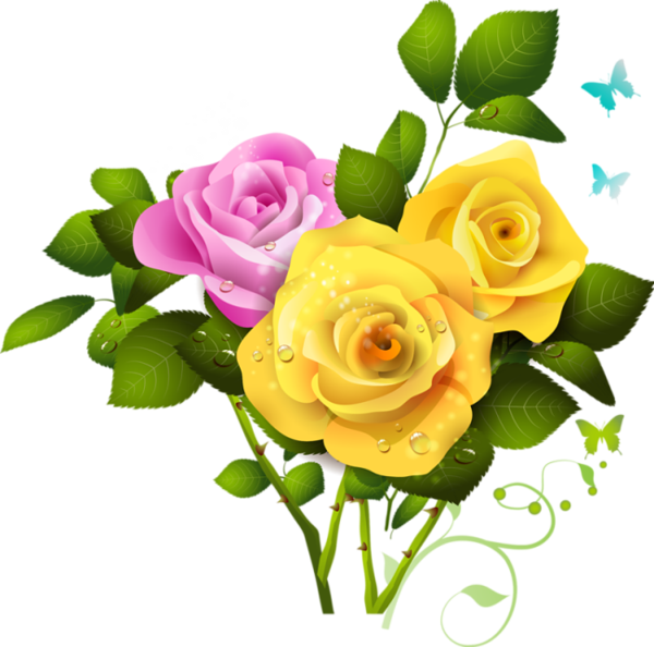 Clipart roses yellow rose. And pink bouquet png