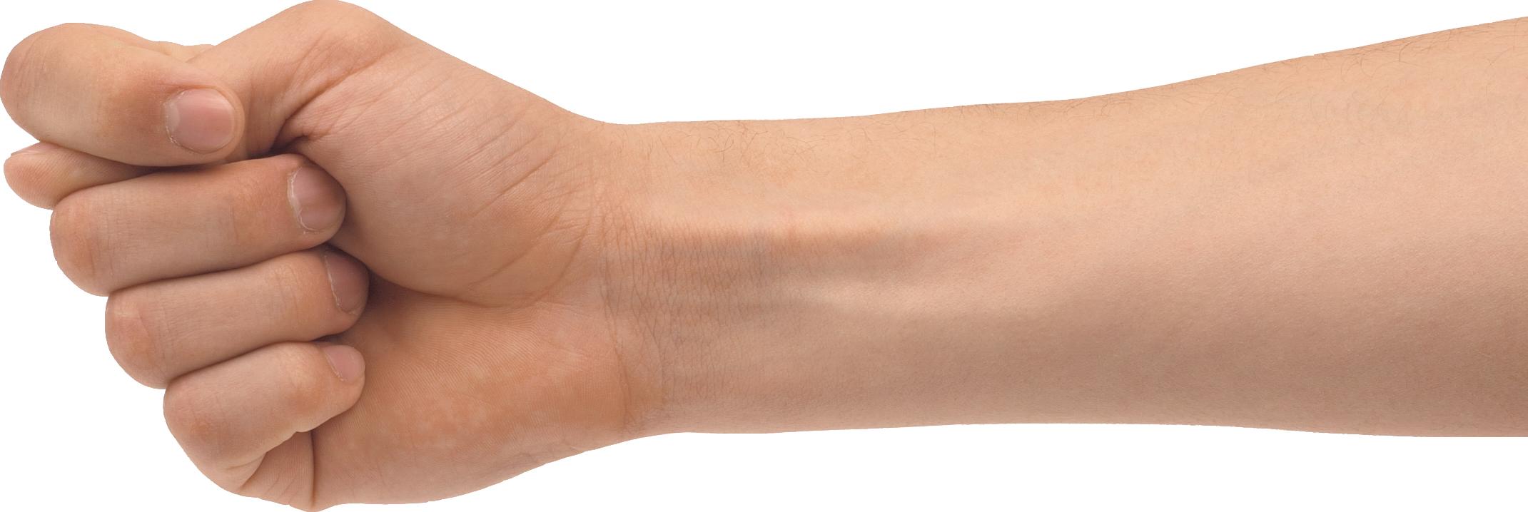 Hand forearm