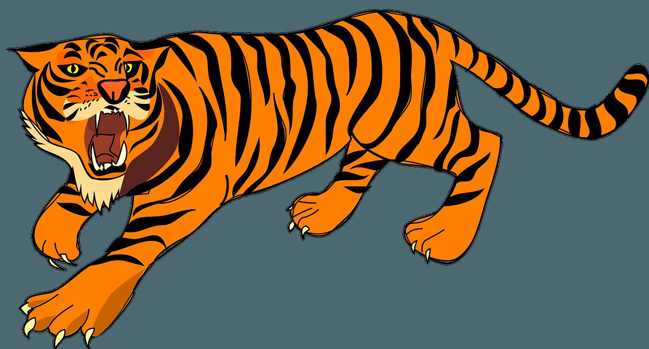 Clipart tiger tiger animal. Tigres tough pencil and