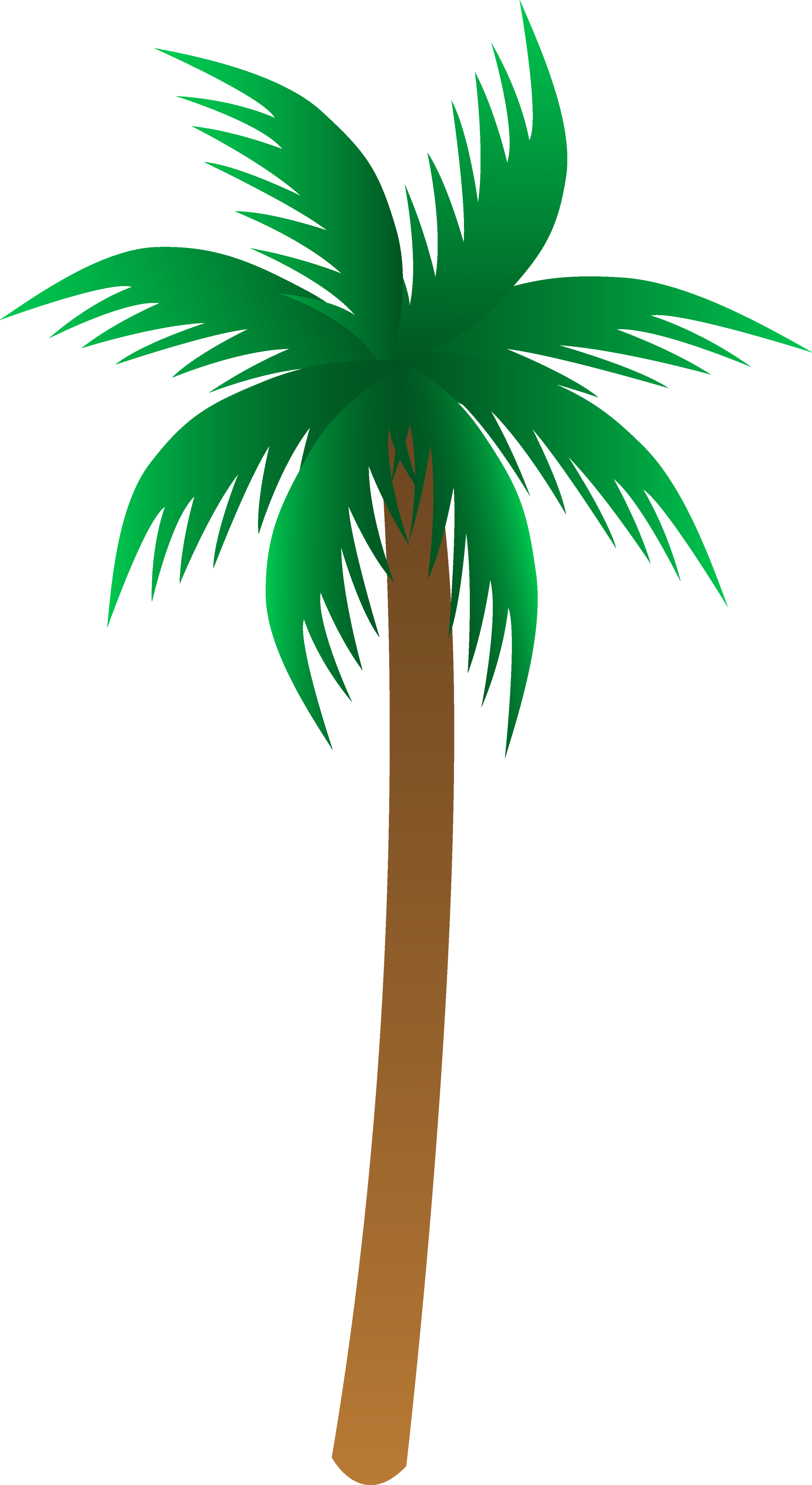 Palm four isolated stock. Potato clipart tree