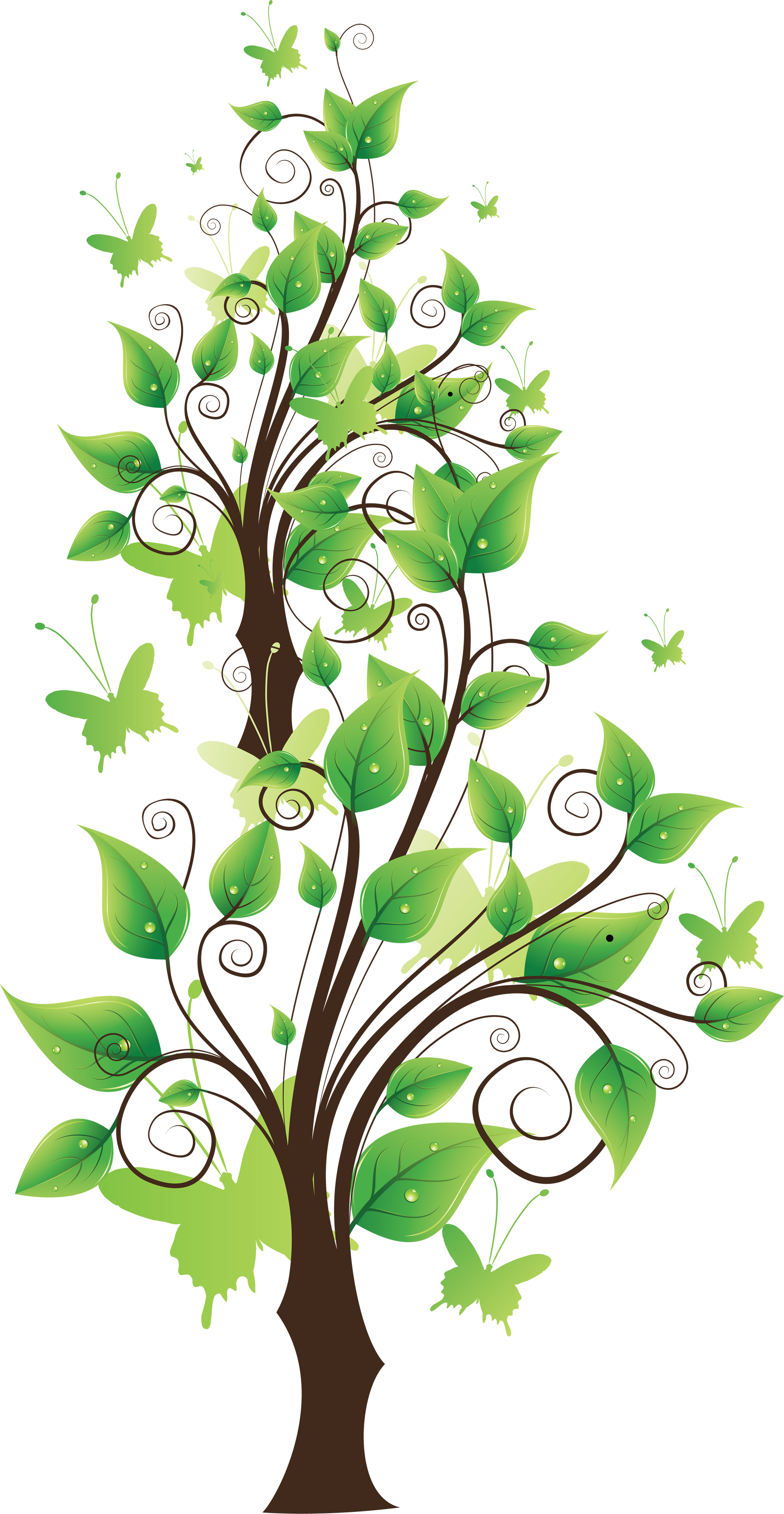 Tree clipart narra. Thirty seven isolated stock