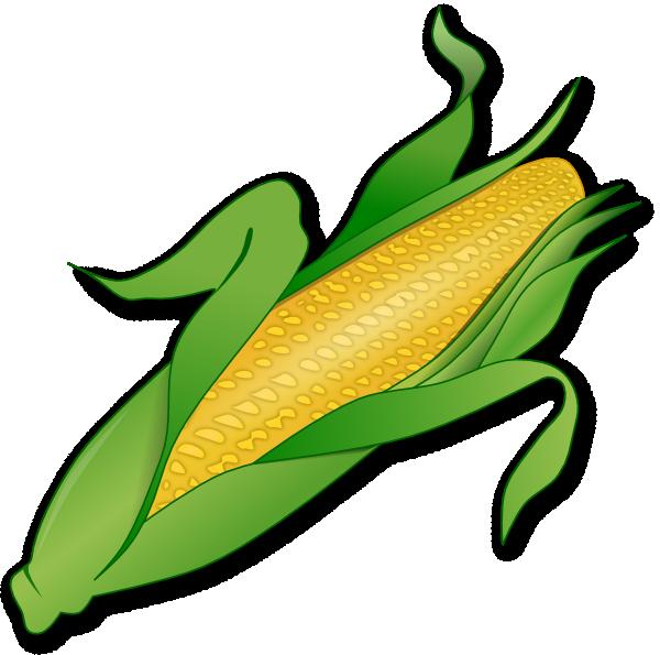 Clip art vector online. Vegetables clipart corn