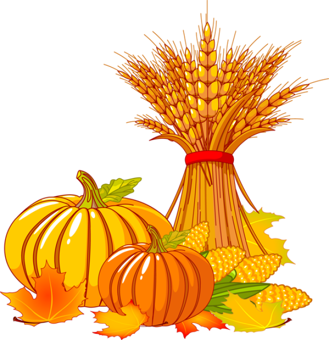 Fall clipart corn stalk. Great thanksgiving icons pinterest