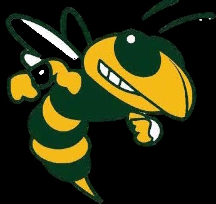 League news carolyn park. Clipart happy hornet