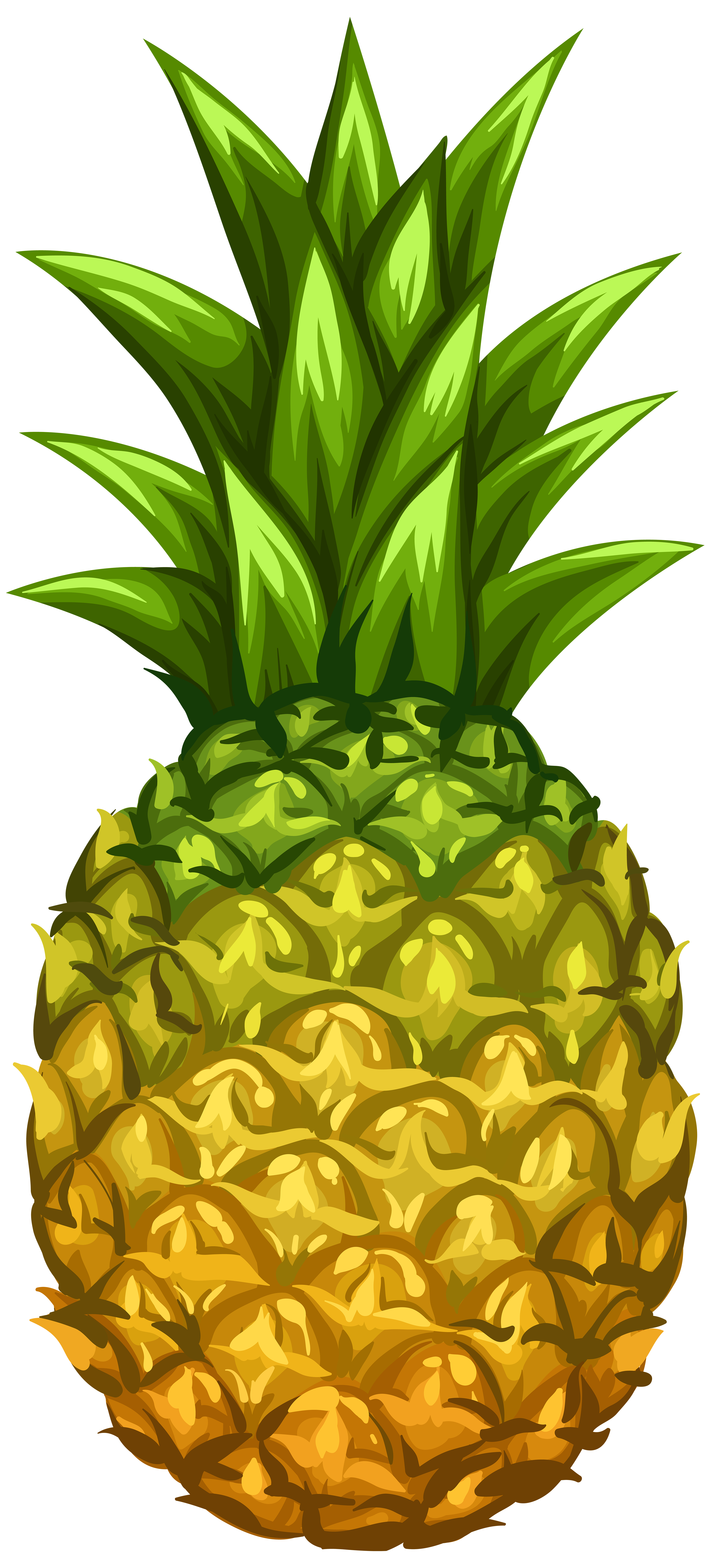 Pineapple clipart bow, Pineapple bow Transparent FREE for ...