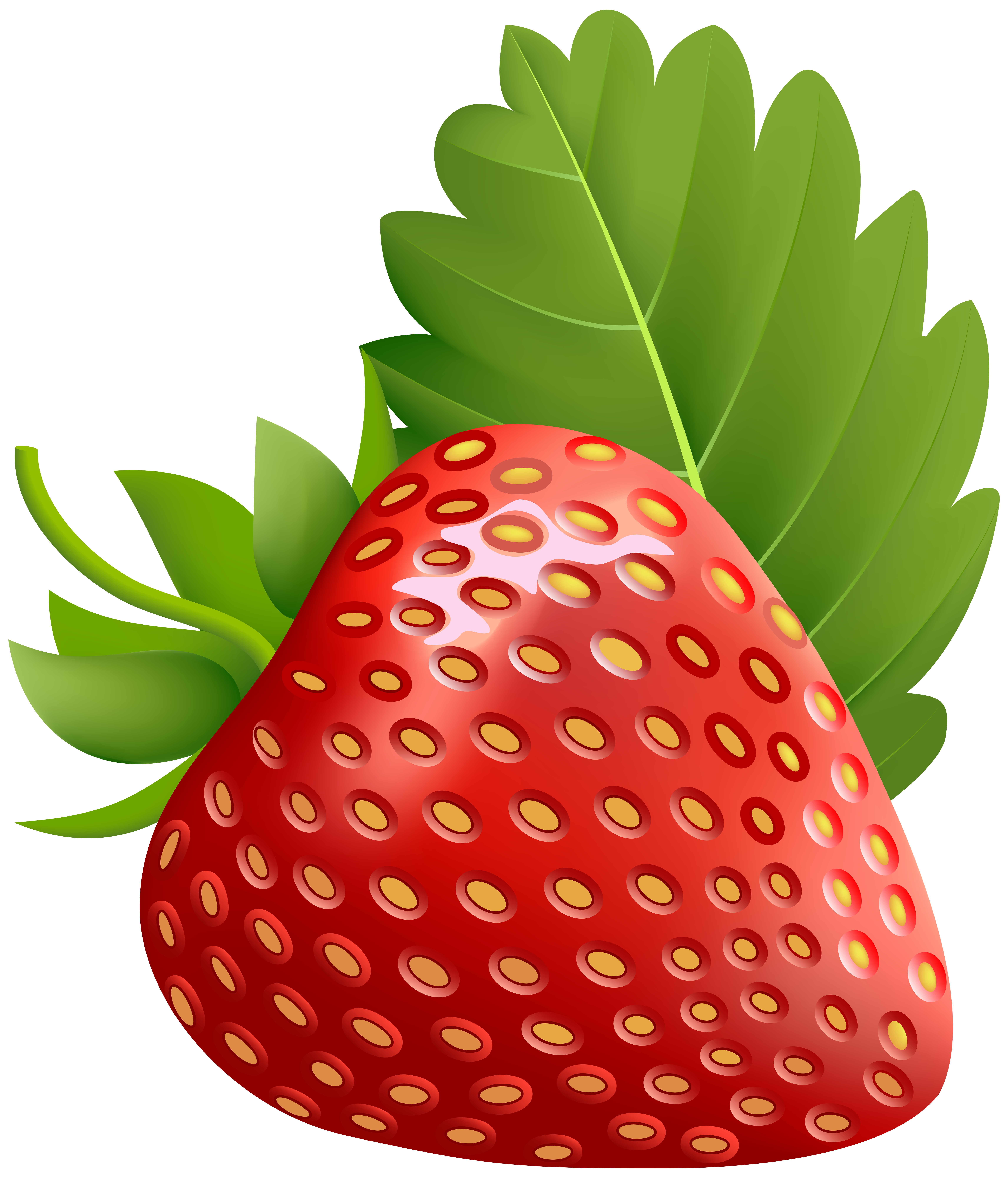 Strawberries clipart banner. Strawberry png transparent image