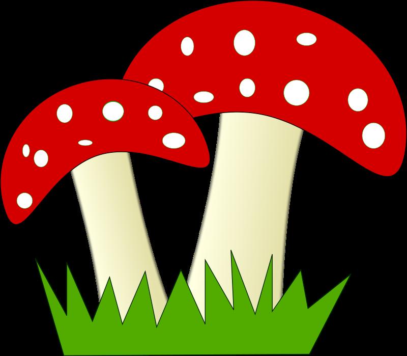Woodland clipart woodland mushroom. Worms house free on