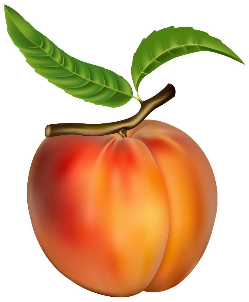 Fruits clipart peach. Png best web