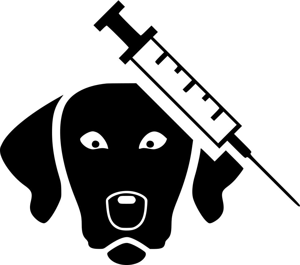 Veterinarian clipart veterinarian tool. Veterinary surgeon svg png