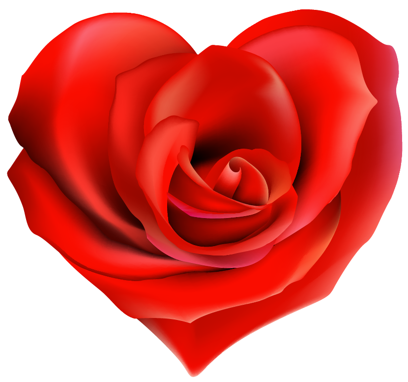 Transparent decor png gallery. Clipart hearts rose
