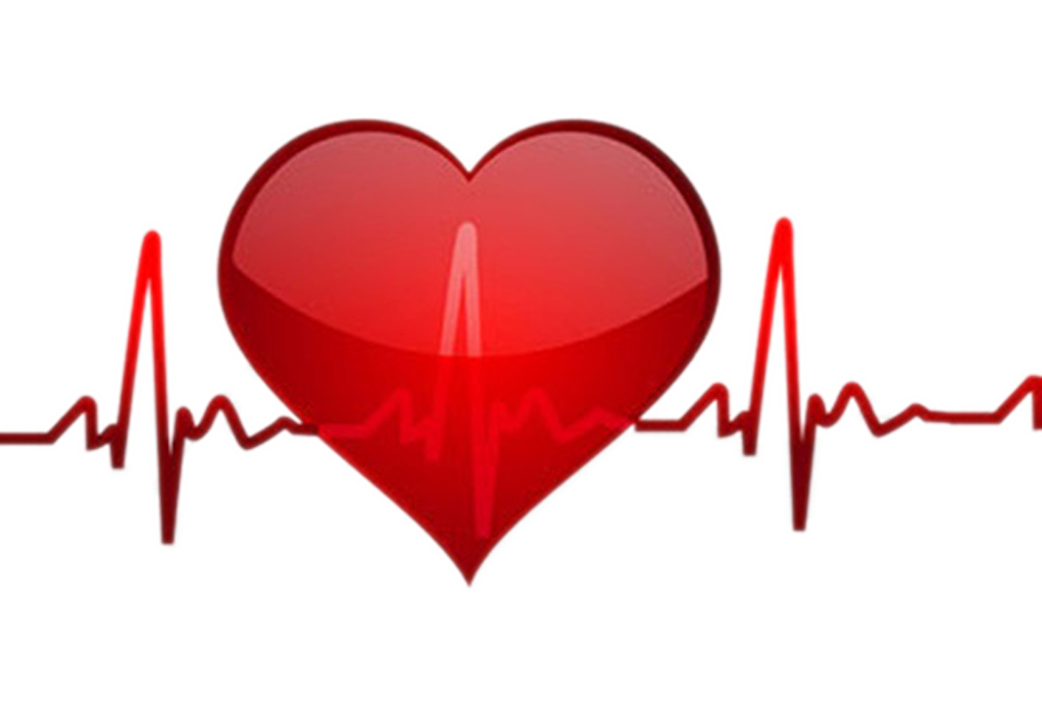 Heart rate clip art. Hearts clipart pulse