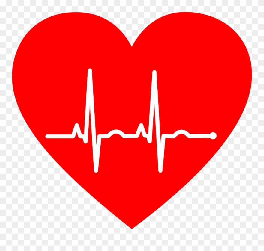 Pulse electrocardiography heart rate. Heartbeat clipart ekg