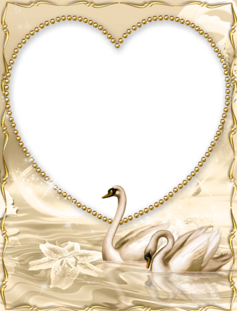 Hearts clipart swan. Beautiful golden png frame