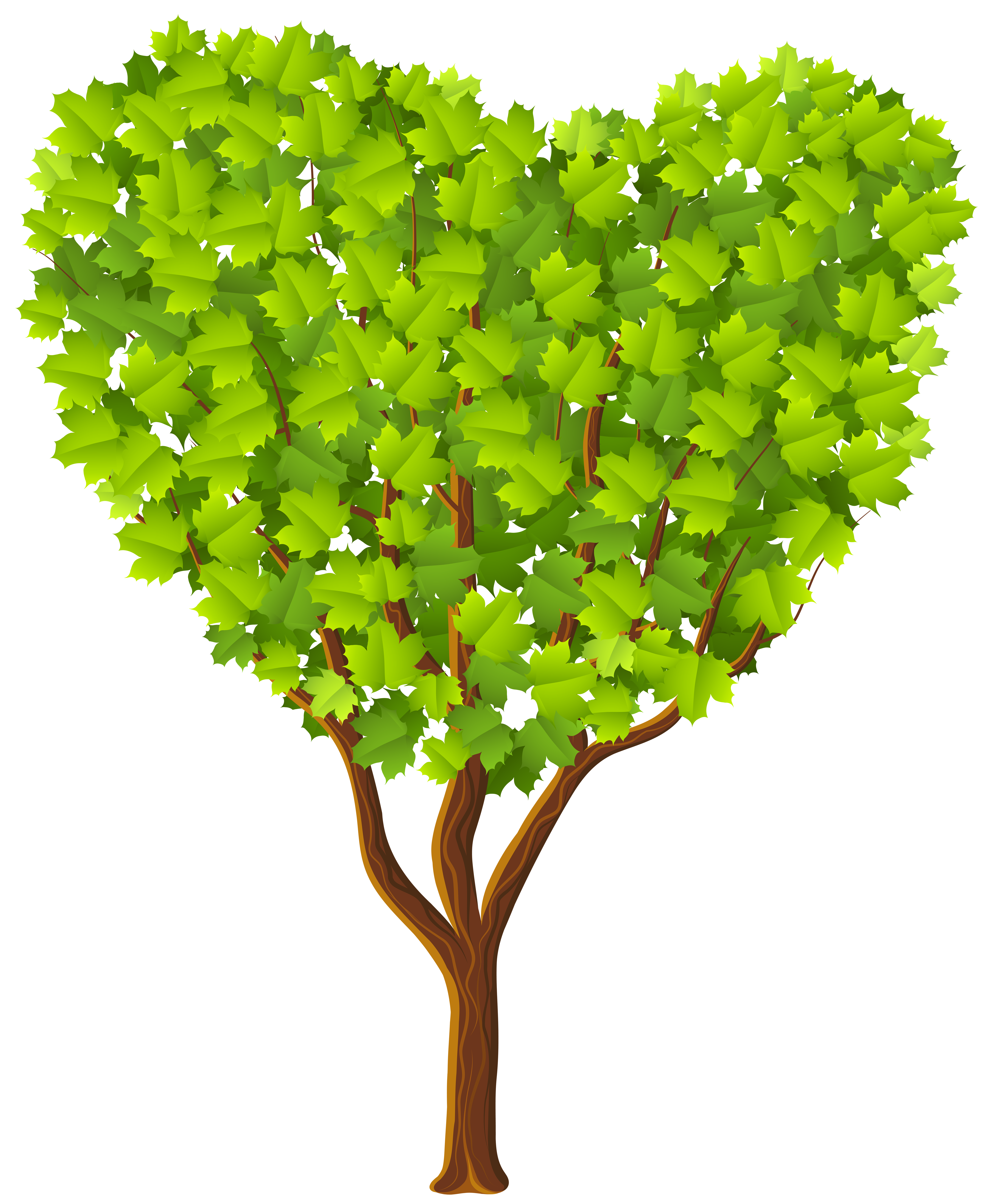 Clipart hearts plant. Green heart tree transparent