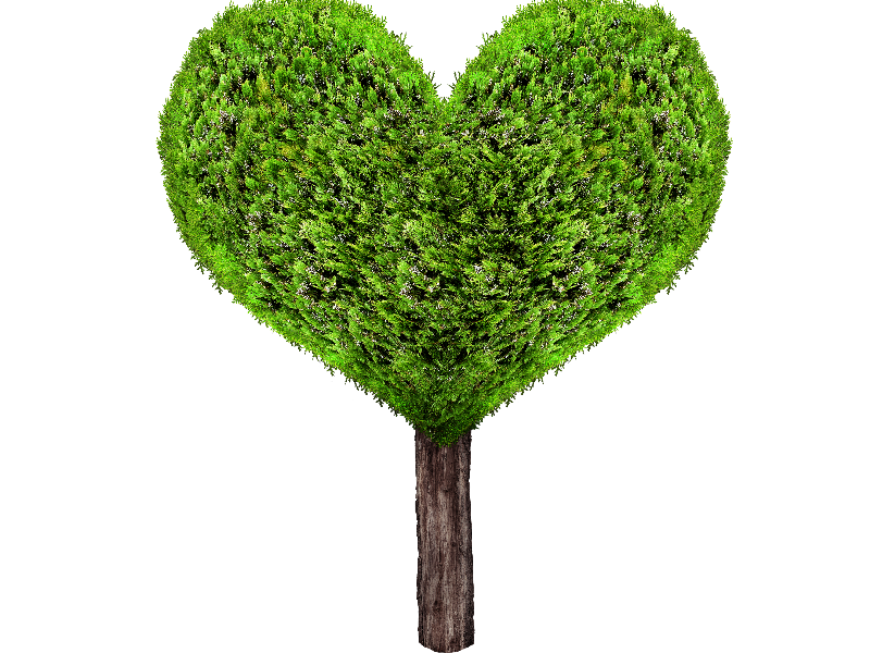 Clipart tree heart. Green png isolated objects