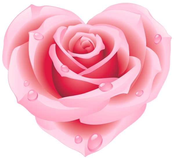 Large pink rose hearts. Heart clipart garden