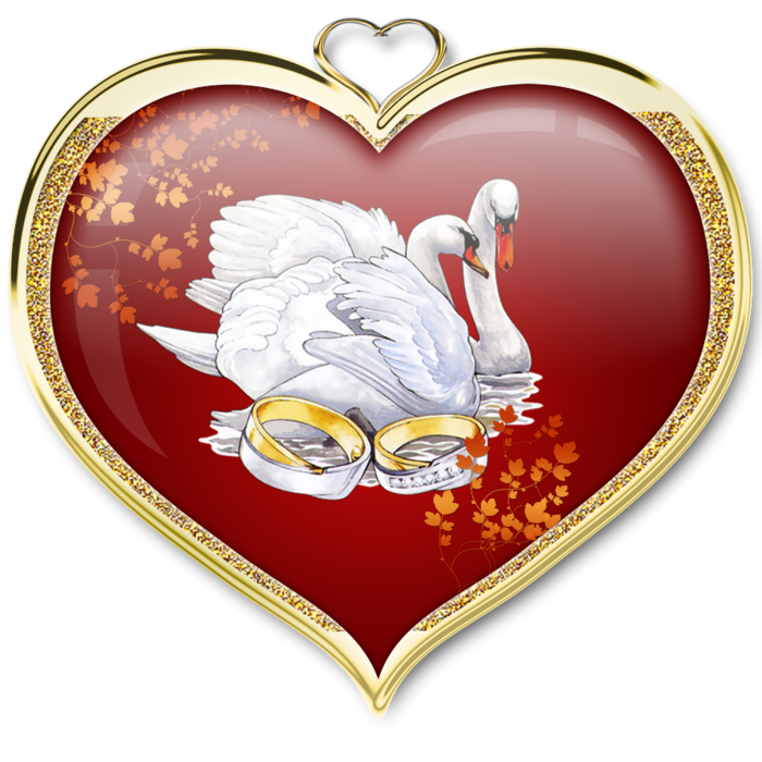 Hearts swan