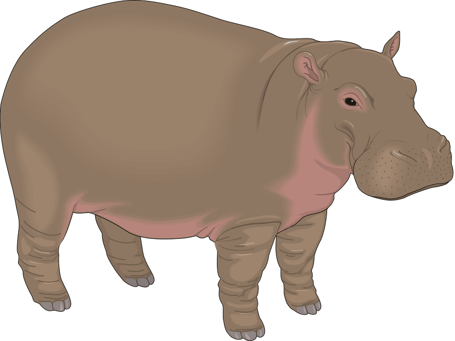 Hippo clipart purple.  collection of free
